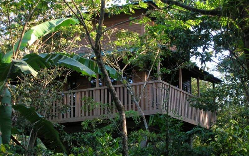 carousel-bioparqueparadise