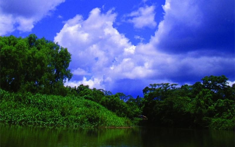 carousel-lamosquitia-naturaleza