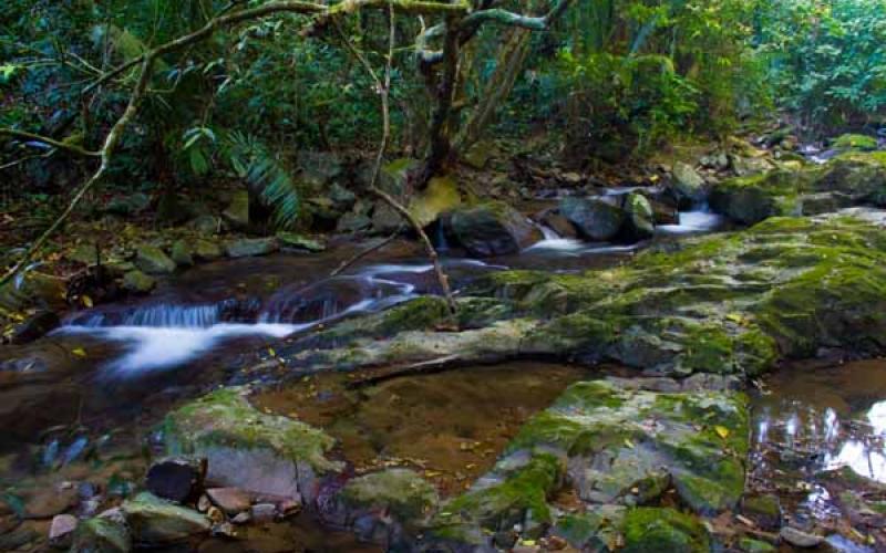 carousel-parquenacionalcapirocalentura